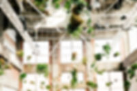 plafond3.jpg