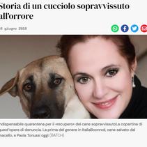 Brescia Oggi 16_06_2016