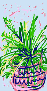 Foxtail Fern - iPhone drawing