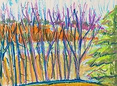 SCary_Winter Trees and Beyond_6'x8%22_oi