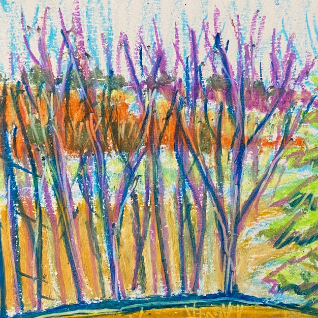 """Winter Trees and Beyond 6""""x8"""" oil pastel"""