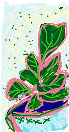 SCary_Fiddle Fig_iphone drawing.jpg