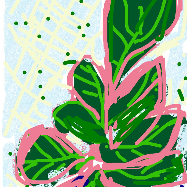 Fiddle Fig iphone drawing