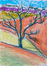 SCary_Walnut Tree-Winter_8%22x6%22 oil p