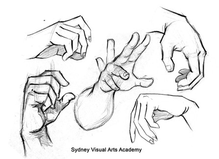 Hand_study.jpg