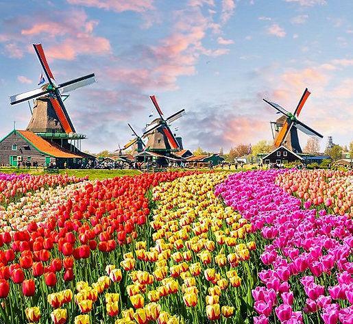 titolo_scheda_olanda_amsterdam.jpg