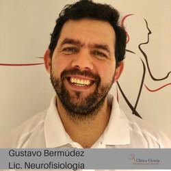 Lic. Gustavo Bermúdez