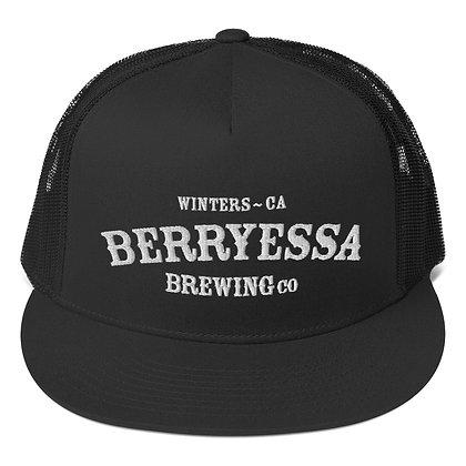 Berryessa Arch Mesh Back Snapback