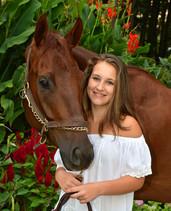 Horse photo love