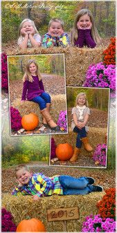 Fall Montage