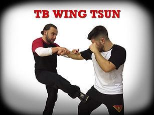 TB Wing.jpg