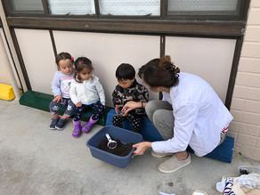 Mrs. Nancy and her Tiny Turtle class