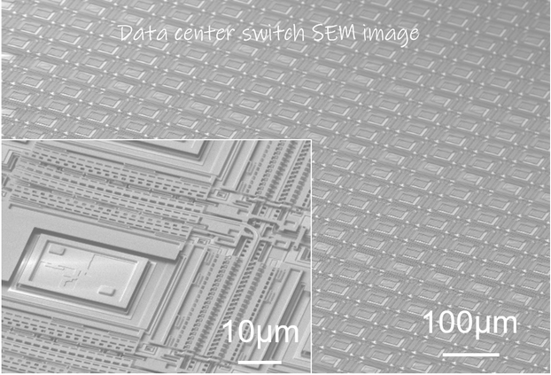 Data center switch SEM image.png