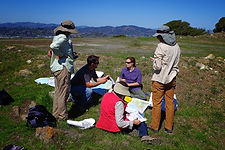 Nicole Myers teaching a group of students in the field
