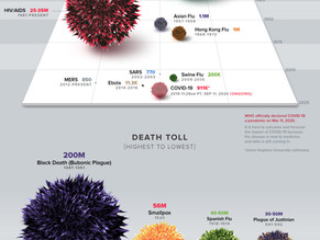 The Timeline of a Pandemic