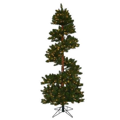 Spiral Pine