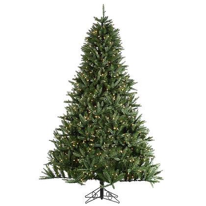 Beaumont Pine