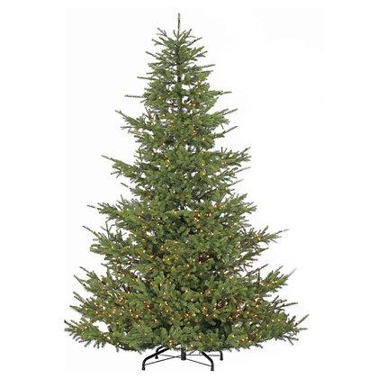 Wilderness Pine