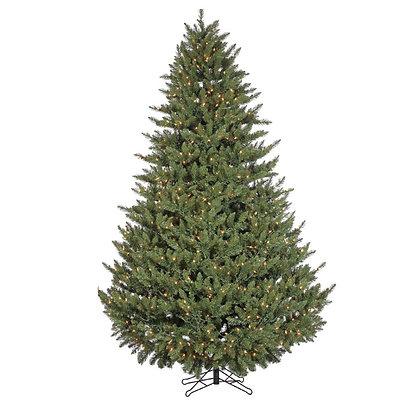 Vermont Spruce