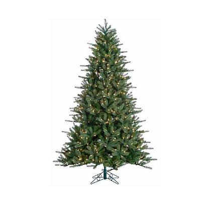 Brooklyn Pine