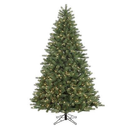 Landry Pine