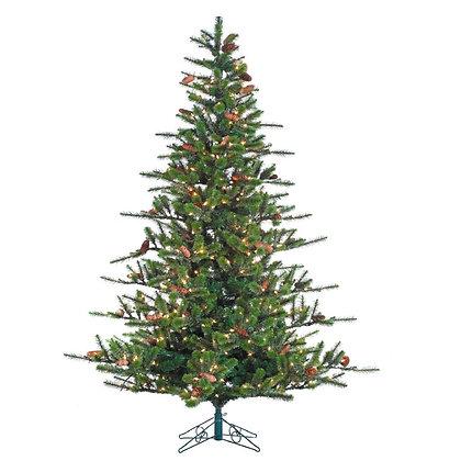 Redmond Pine