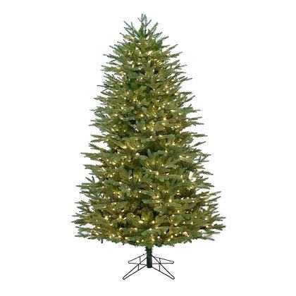 Monroe Pine