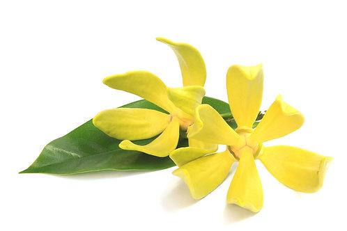 Ginger Lily & Ylang Ylang - Unboxed 100ml Reed Diffuser