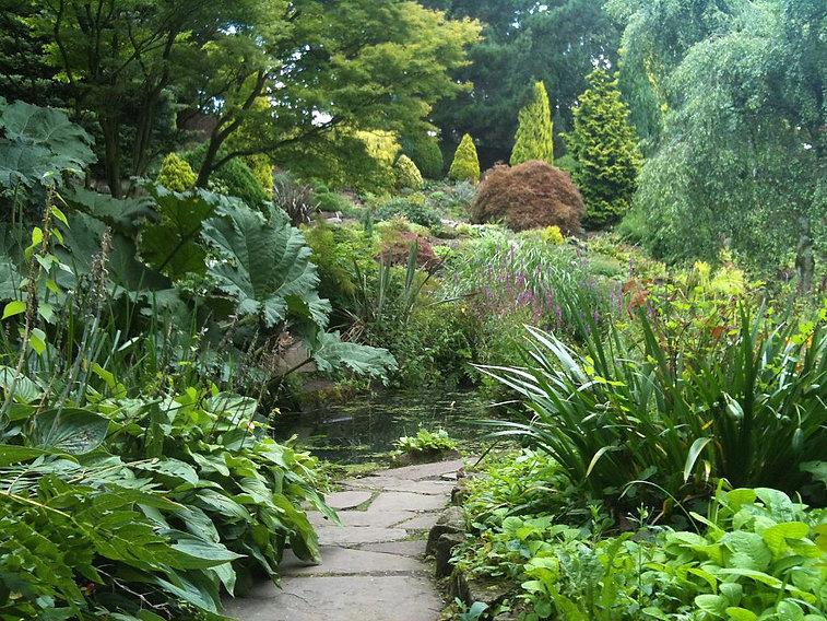Fletcher Moss Botanical Garden.jpg