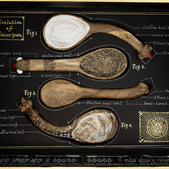 Evolution of Sauce Spoon