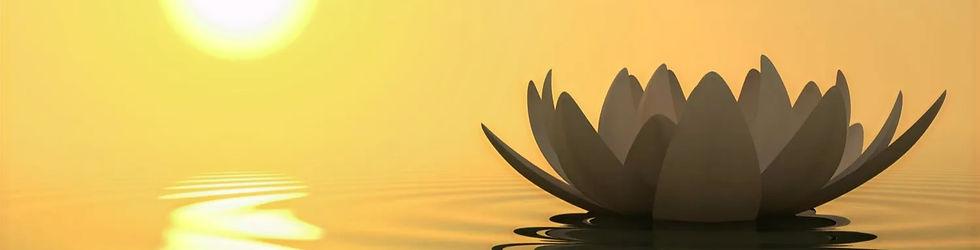Mindfulness praktični trening MBSR meditacija mentalno zdravlje
