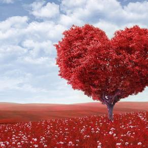 Fascinantno srce