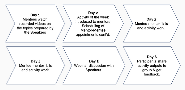 Mentoring overview.png