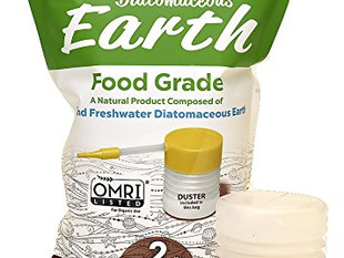 Diatomaceous Earth, Need to Know.