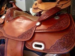 A_Saddle platerigging