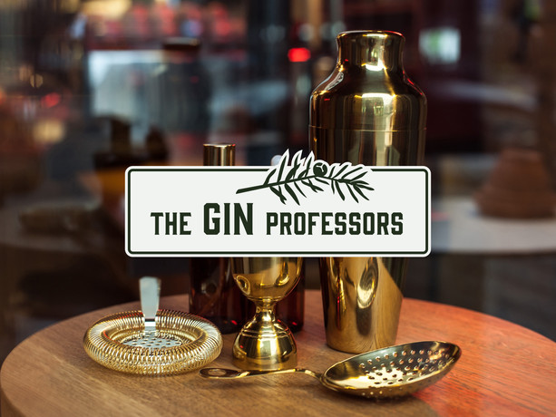 The Gin Professors