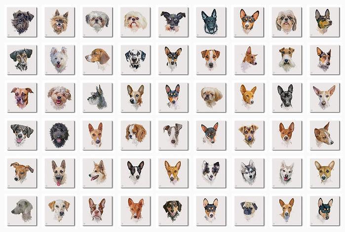 Watercolor-Dogs-54.jpg