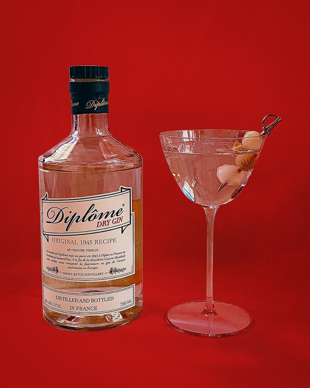Gin Professors Diplome