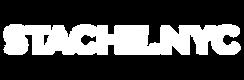 Stache logo white.png