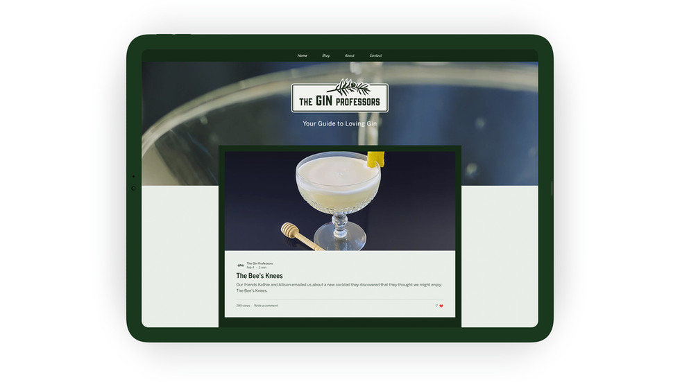 Gin-prof-iPad.jpg