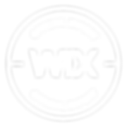 Wix-Expert-Badge-White.png