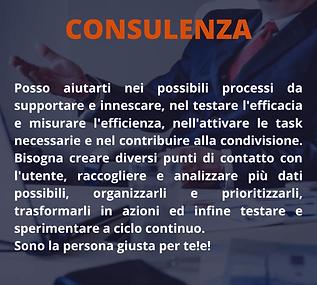 box Consulenza.png
