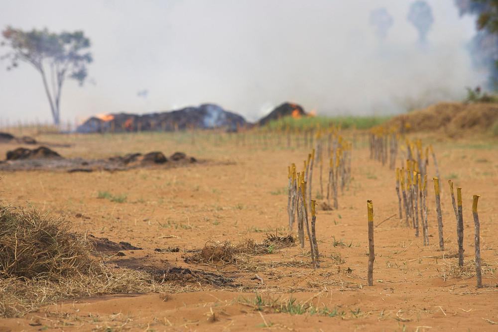 Documentary | UNDP Demining