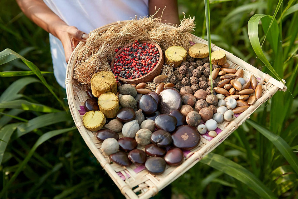 Traditional herbal ingredients on woven tray with green background