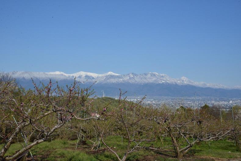 春の雪と後山