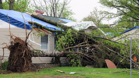 Wind Damage in Florida 2.jpg