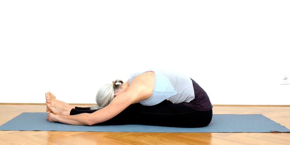 jógová terapie 17.30 - 18.30 (1)