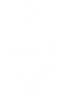 BagelBar_Owl_White_Transparent.png