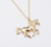 Running Necklace.png