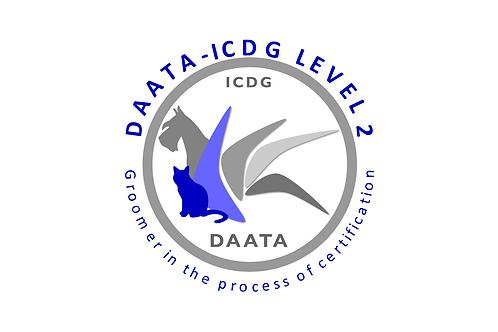 DAATA - LVL 2 - Deepening of the method - EB